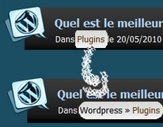 Catégorie parente de The Categorie : Hack Wordpress