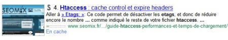 Exemple de lien placé dans une description Google