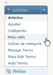 Menu des mots clefs de WordPress