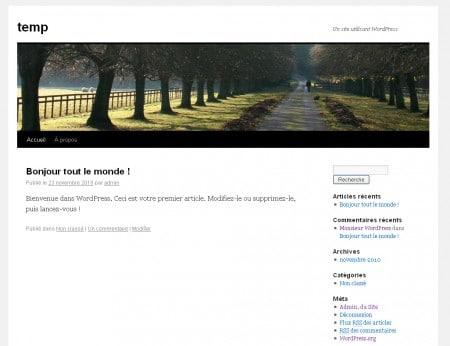 Le thème du CMS WordPress