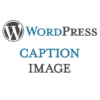 Caption Image WordPress