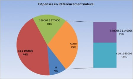Les dépenses SEO (étude Econsultancy)