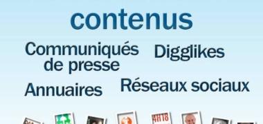 Plateformes de contenus et référencement naturel