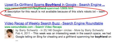 Page bloquée par Robots.txt dans les résultats de Google