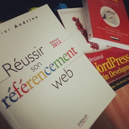 Livre Réussir son référencement web