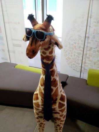 La girafe WordPress de retour