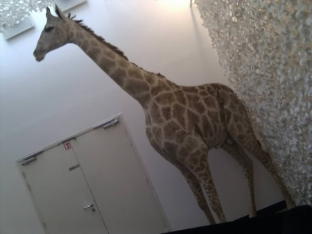 La girafe du WordCamp Paris 2013