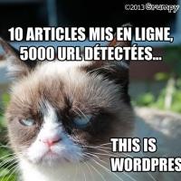 This is WordPress