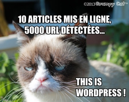 This is WordPress