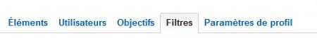 Onglet filtre du profil Analytics