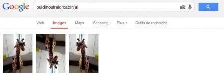 Résultat Google Image avec NoScript