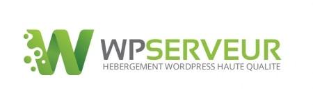Logo WP Serveur