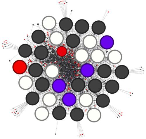 La structure SEO finale avec Gephi