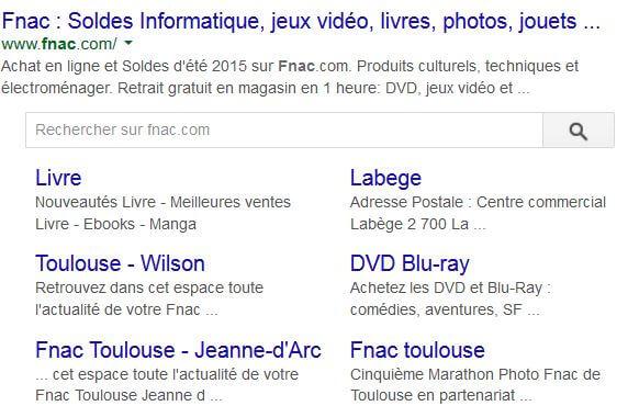 moteur de recherche intrasite