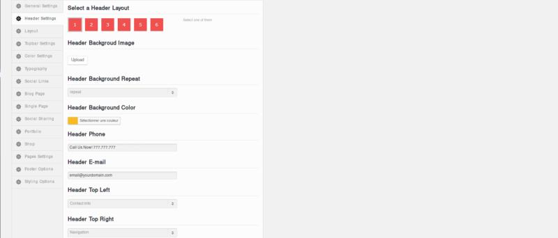 Une page d'options peu ergonomique dans un thème WordPress