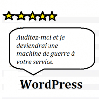 audit seo d'un site sur wordpress