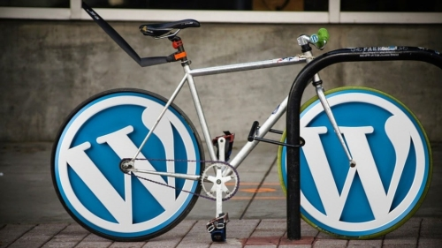 faire du seo sous wordpress