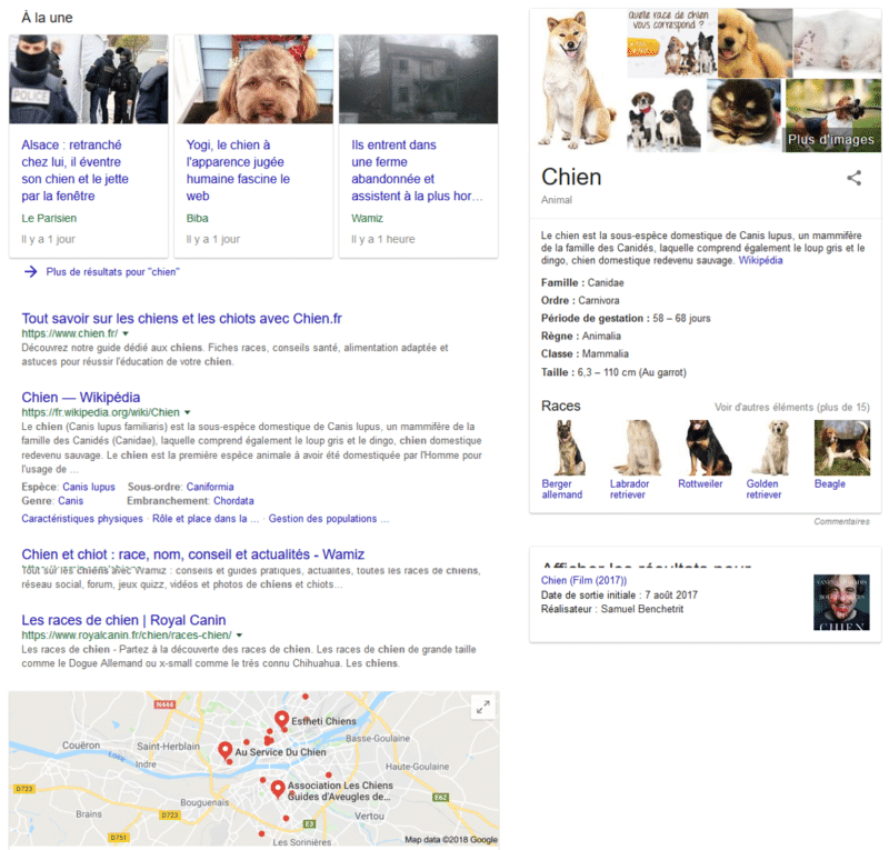 """La recherche """"Chien"""" sur Google"""